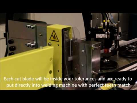 ALO 177-H-100 Cut to length machine with match finder system