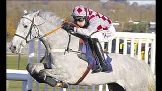 Hennessy Gold Cup Smad Place selection