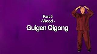 Guigen Qigong Wood Element -Part 5- Medical Qigong Training Exercises
