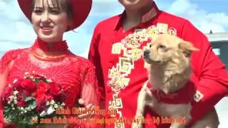 Chú chó đáng yêu cùng cô dâu về nhà chồng (Adorable dog and bride come home to her husband )