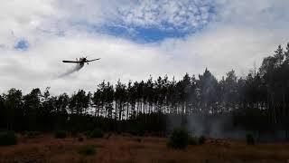 Film   Pożar lasu   Leśnictwo Drzewice