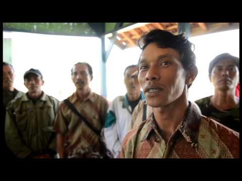 COMPANY PROFILE PT BUMN Hijau Lestari I - YouTube