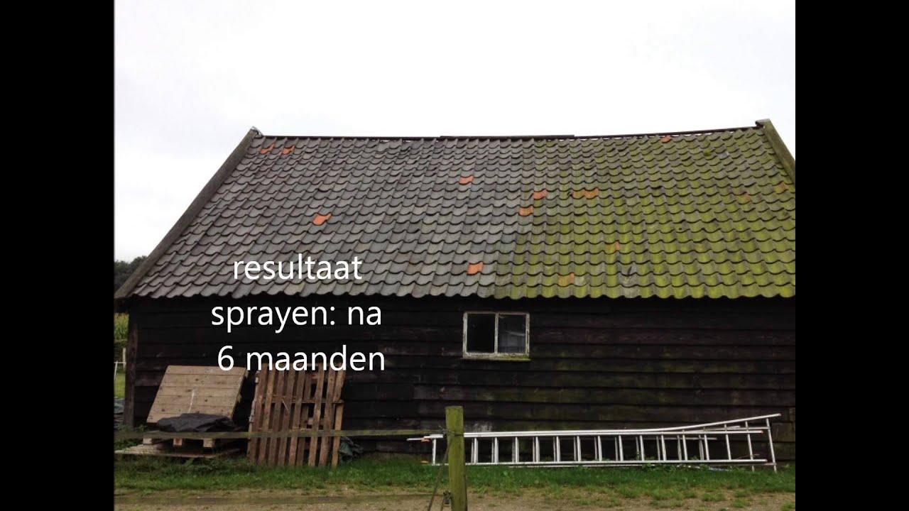 Zelf dakpannen schoonmaken