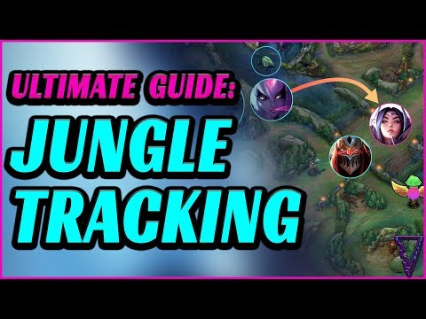 Ultimate Jungle Tracking Guide For All Roles (Track The Enemy Jungle)