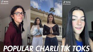 Charli D'amelio's Most Viewed Tik Toks Ever! | Popular Tik Toks 2020