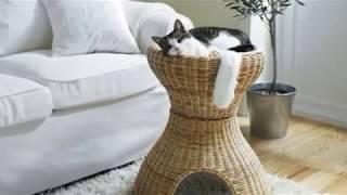 Красивые, стильные лежанки для кошек как часть интерьера