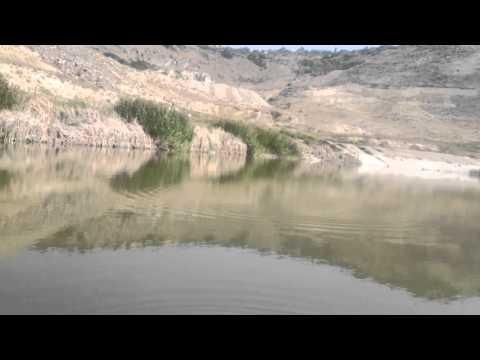 Рыбалка на сазана в Армении