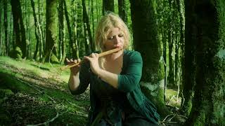 Relaxing Bansuri Bamboo Flute Meditation in the Forest. Calming Music | Priscilla Hernandez