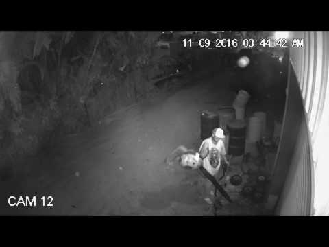 Night Hawk Monitoring Remote Video Monitoring - Election Night Theft Apprehended 11/9/16