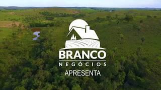 Fazenda a Venda - Serra da Saudade - Minas Gerais