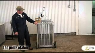 CEPOQ - Capsule Calibration d'une balance électronique