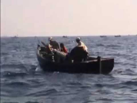 Fishing Very Big Tuna at Morocco With Small Boat!