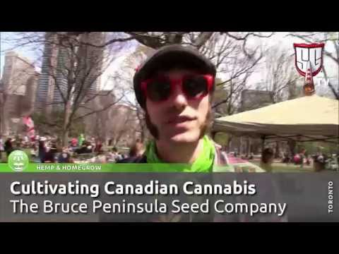 Cultivating Canadian Cannabis -  Bruce Peninsula Seed Company - Smokers Guide TV Canada