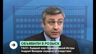 Бывший мэр Истры Андрей Вихарев объявлен в розыск после побега