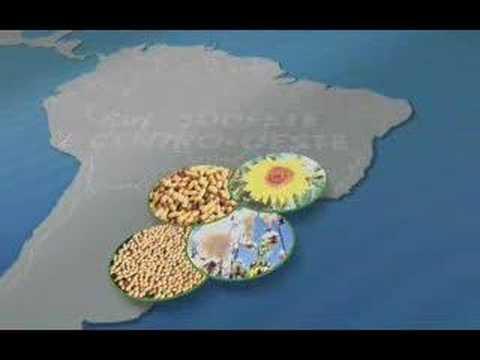Enem: Biodiesel no Jornal Nacional (ProUni)