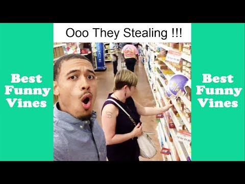 Best Mighty Duck Vine Compilation (W/Titles) | Funny Mighty Duck Vines - Best Funny Vines