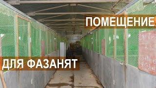 """Фазанья ферма """"Русское подворье"""". Помещение для содержания молодняка"""