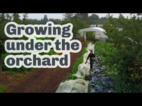 Profitable Market Gardening in Luxembourg City
