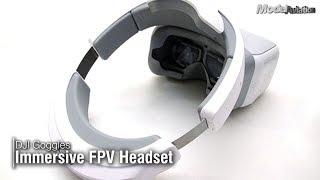 DJI Goggles Immersive FPV Headset - Model Aviation