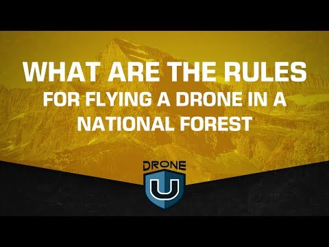 What are the rules for flying a drone in a National Forest?