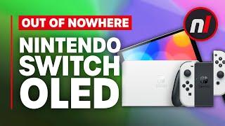 Nintendo Switch OLED Model Revealed, Not Switch Pro