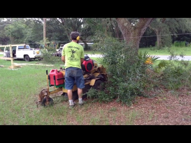 Easy Brush Removal Vermeer 222 stump grinder  new honda
