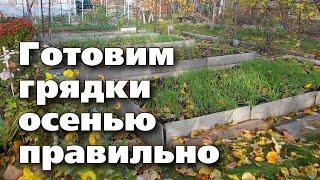 ЧТО ДОБАВИТЬ В ГРЯДКУ ДЛЯ БУДУЩИХ УРОЖАЕВ. Осенняя обработка земли в огороде