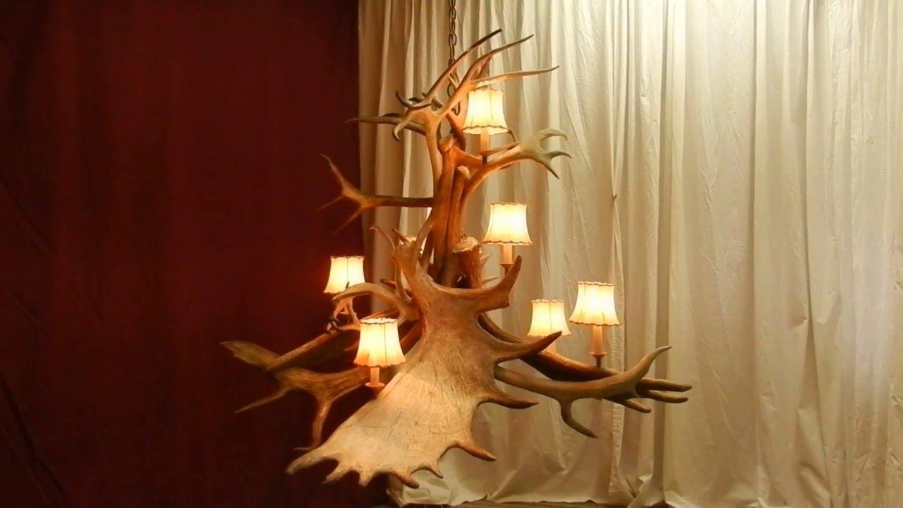 Asymmetrical moose caribou antler chandelier youtube asymmetrical moose caribou antler chandelier arubaitofo Images