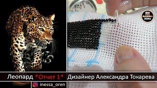 Как вышивать бисером. Леопард (Отчет 1) Дизайнер Александра Токарева .