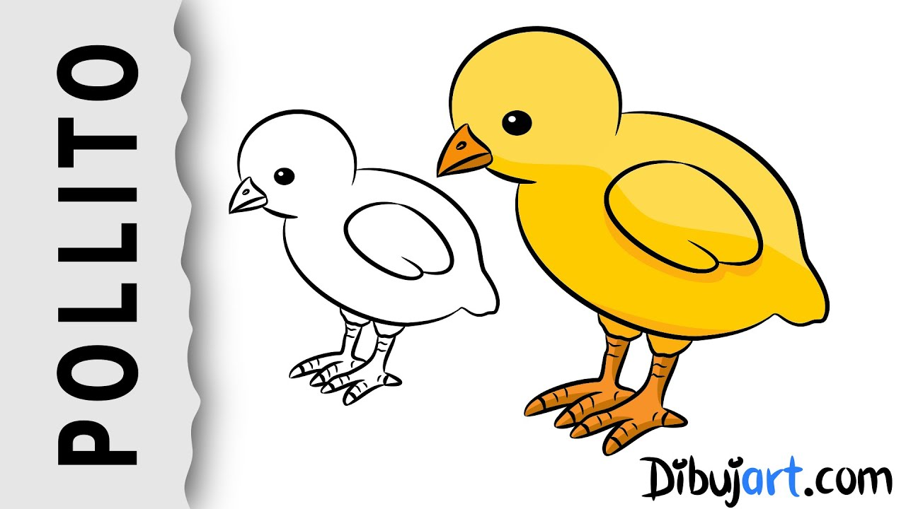 Cómo Dibujar Un Pollito Pio Dibujo Sencillo Paso A Paso