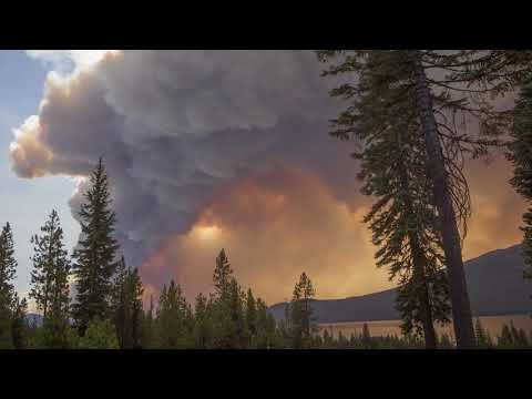 Post 2017 Wildfire Future For The Umpqua National Forest