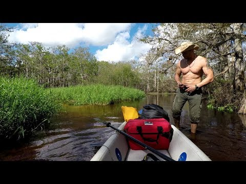 Wild Camping On Tropical Creek With Alligators
