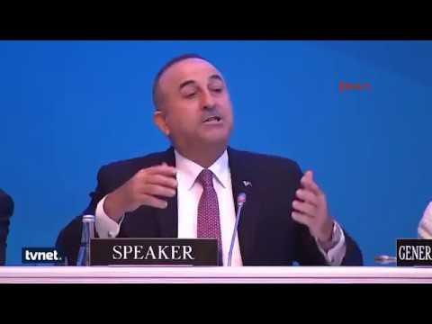 Mevlüt Çavuşoğlu Ermeni Vekili Tokatladı