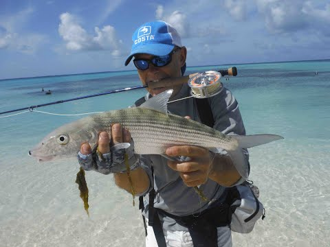 Los Roques Bonefish On Fly!!