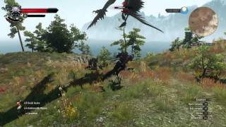 The Witcher 3: Wild Hunt Lvl 48 King Griff fight Death Race difficulty
