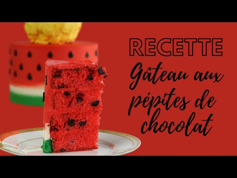 recette-de-gâteau-pépites-de-chocolat