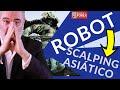 Introducción al Robot Scalping Forex  Asiatico Automatizado - Mejor sistema de scalping en Forex MT4