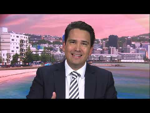 Simon Bridges says PM's story on allegations against Labour staffer doesn't 'ring particularly true'
