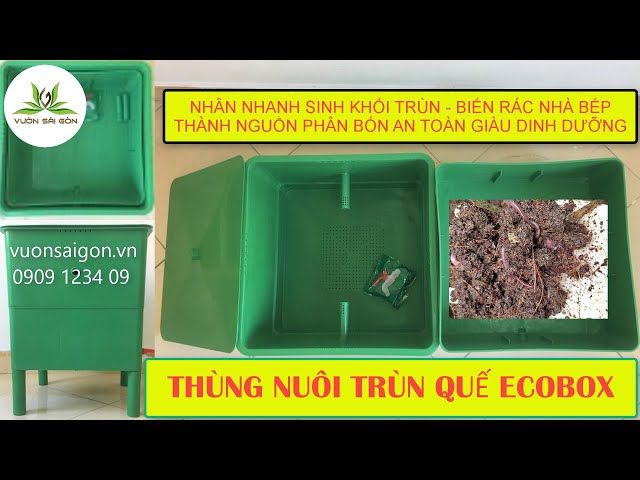 Thùng nuôi trùn quế Ecobox - Nhân nhanh sinh khối trùn - Biến rác nhà bếp thành phân hữu cơ