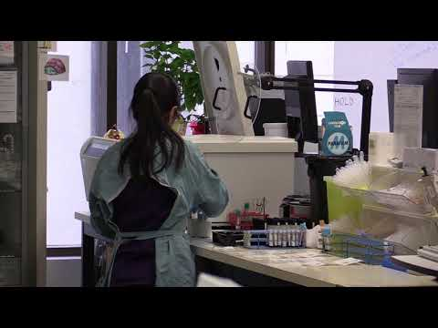 Edmonton Laboratory Clinical Hub