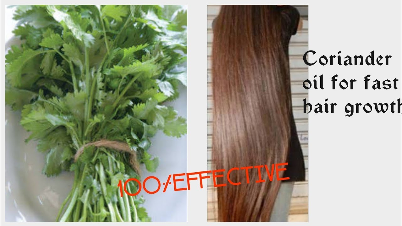 coriander oil for super fast hair growth challenge||how to grow long and  thicken hair faster hindi