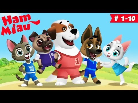 Ham Miau 🐶 Ep. 1-10 🐱 Desene Animate Pentru Copii -  HeyKids