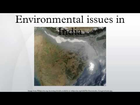 essay on environment problems in india Impact of festivals on environment and cause respiratory problems in childrenchemicals used in crackers short essay for school students on indian.