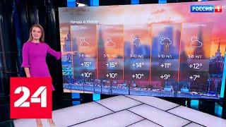 Погода на выходные: в столичном регионе совпали все благоприятные факторы - Россия 24