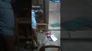 Test briket arang batok kelapa