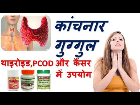 Kanchnar Guggulu benefits in thyroid, cancer and PCOD