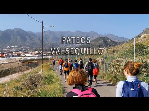 PATEOS VALSEQUILLO