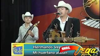 Los Hermanos Vega JR - Mi huerfano alazan