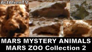 MARS ZOO Collection 2: Life on Mars: Mystery Alien Animals: NASA Curiosity Rover. ArtAlienTV 720p