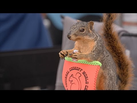 Arkansas Wildlife - S1.E4, Arkansas Squirrel And Arkansas Hunters Feeding The Hungry